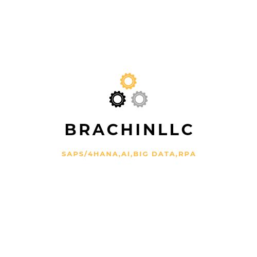 BRACHIN LLC