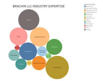 BRACHIN_LLC_INDUSTRY_EXPERTISE_V2